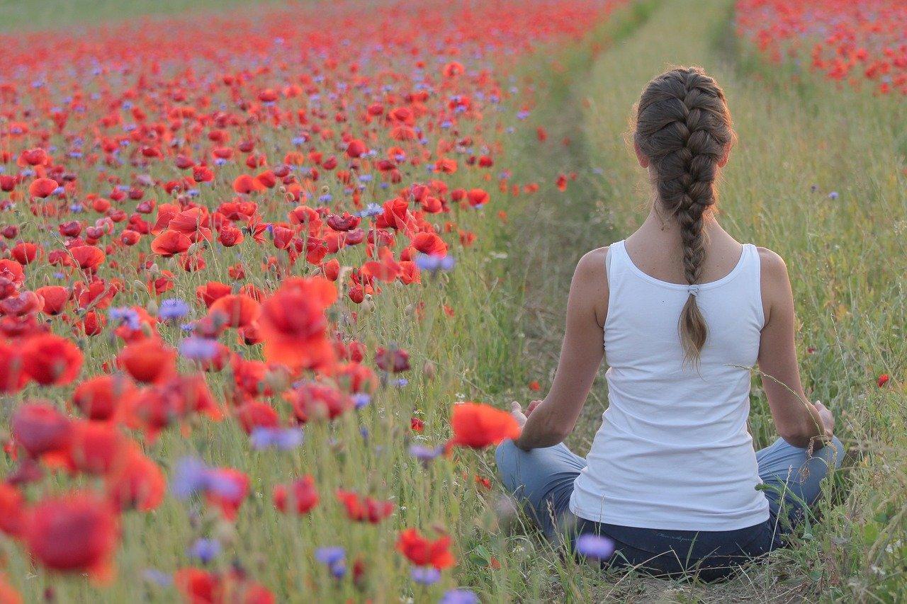 poppies, yoga, field